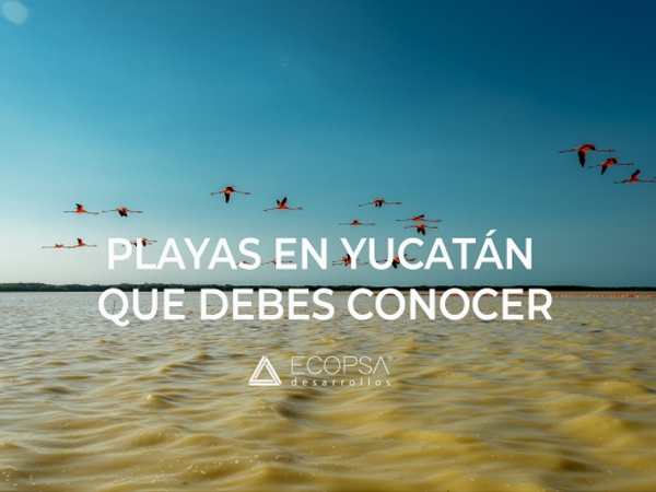 Playas en Yucatán que debes de conocer