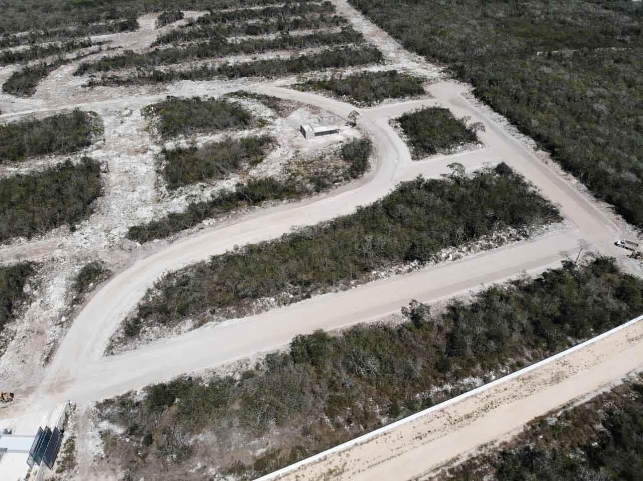sector_inmobiliario_tierras